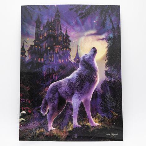 """Poster 3D """"Loup & Château"""""""
