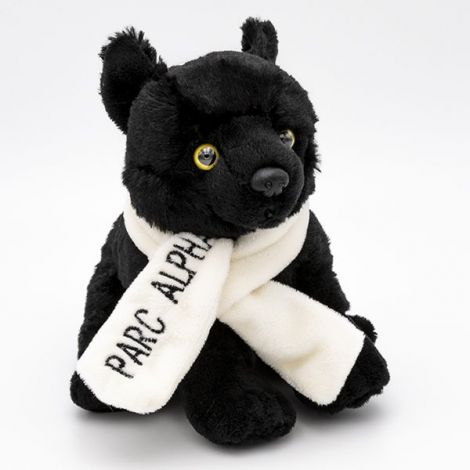 Loup noir & Écharpe Alpha