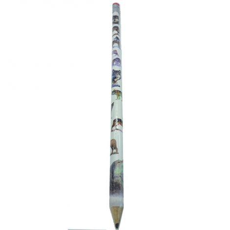 Crayon de papier Extra Long